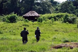 https://www.art1a1d.com/wp-content/uploads/2017/07/Congo-11.jpg