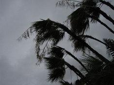 tropical-cyclone_f_improf_259x176